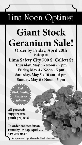Giant Stock Geranium Sale!