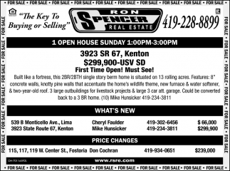 Open House - 3923 SR 67, Kenton